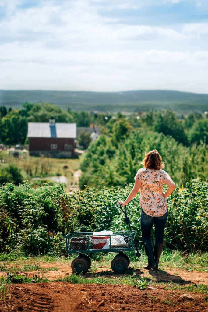 A woman standing next to a small cart overlooking the fields of a farm.