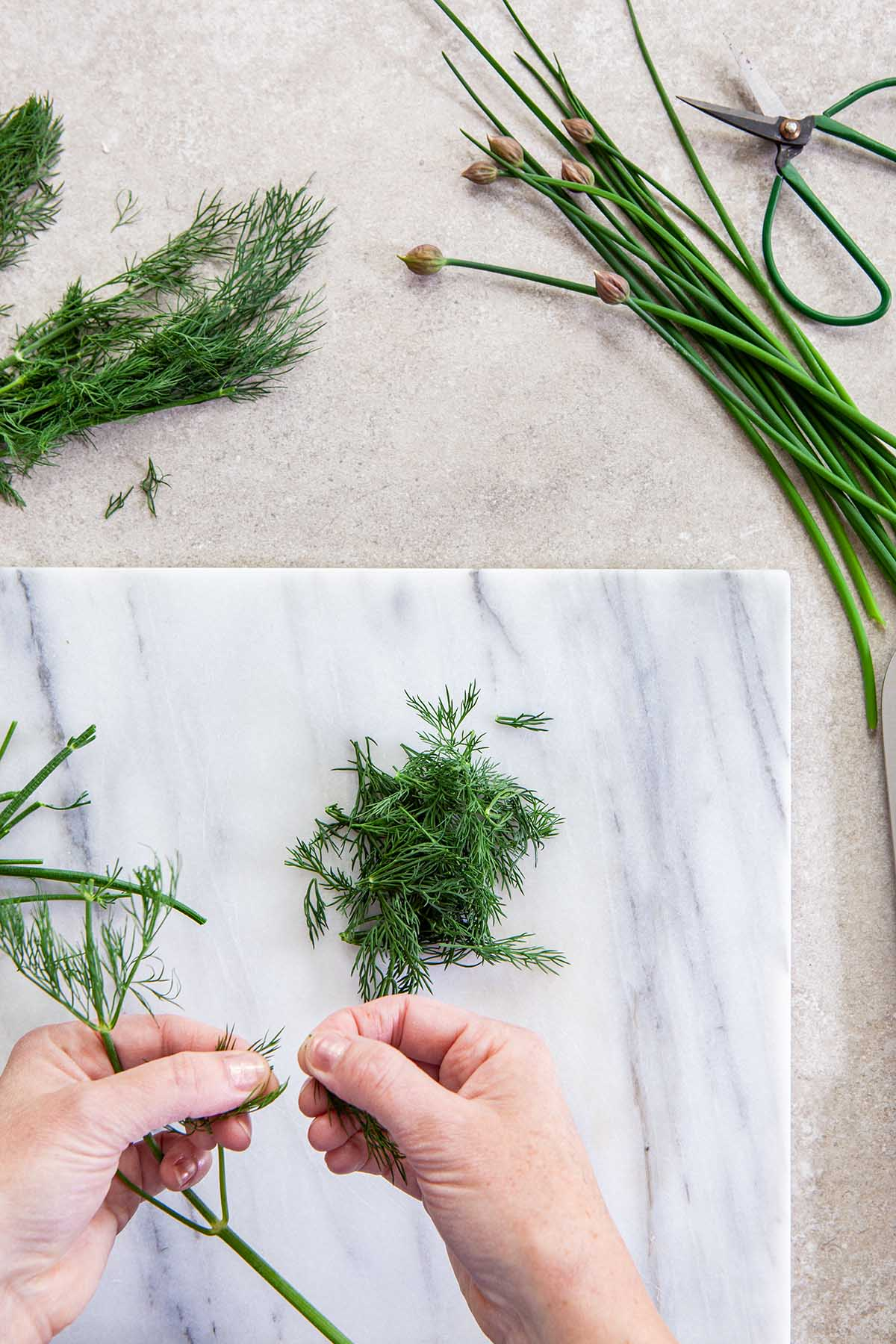 Two hans separating dill fronds from the stems over a marble surface.