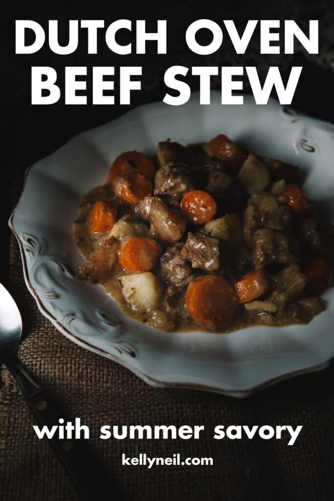 A bowl of beef stew.