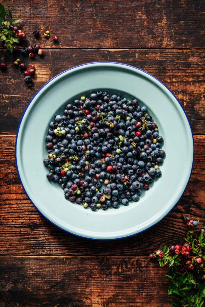 Overhead shot of a bowl of wild blueberries for Nova Scotia blueberry grunt.