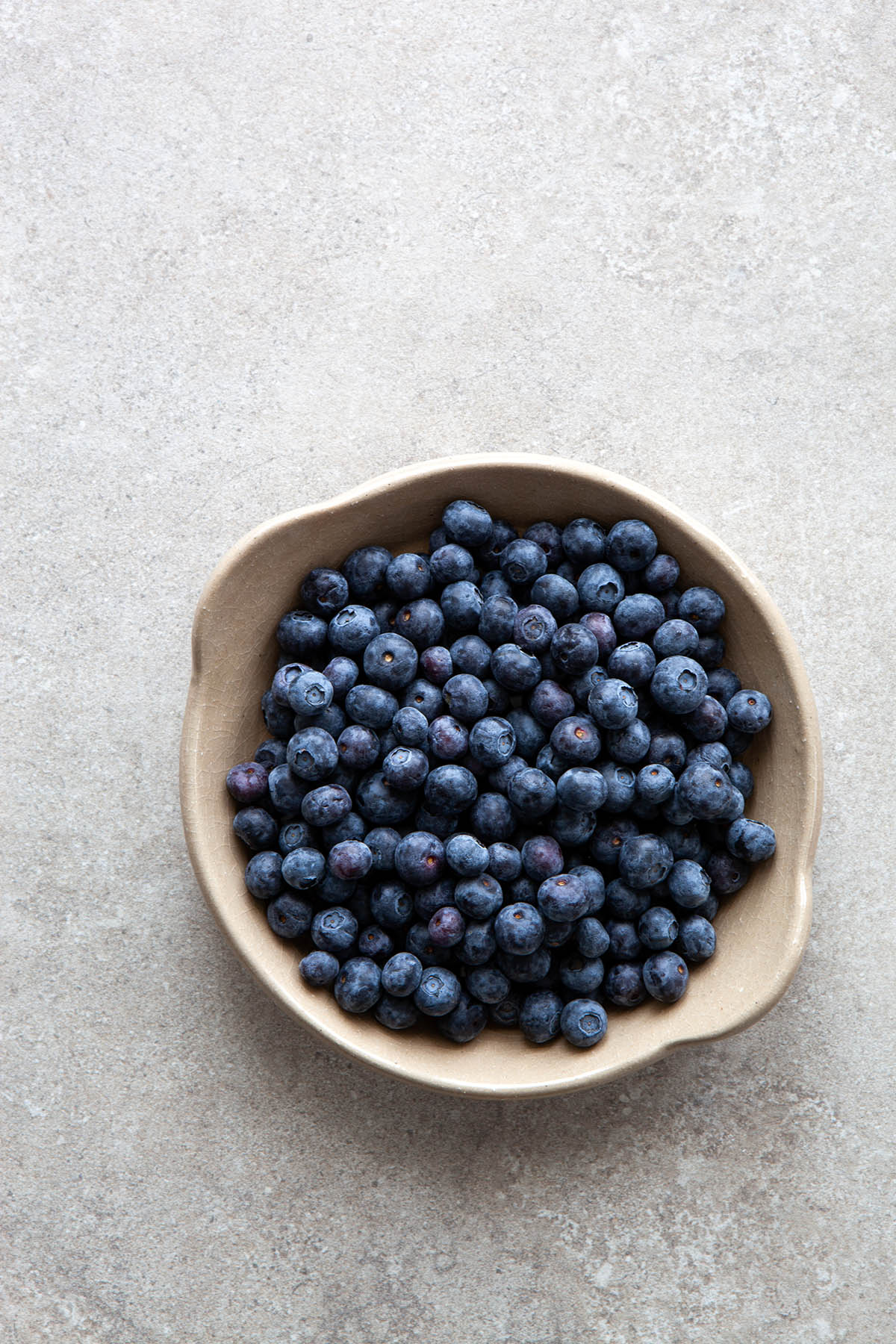 A dish of blueberries.