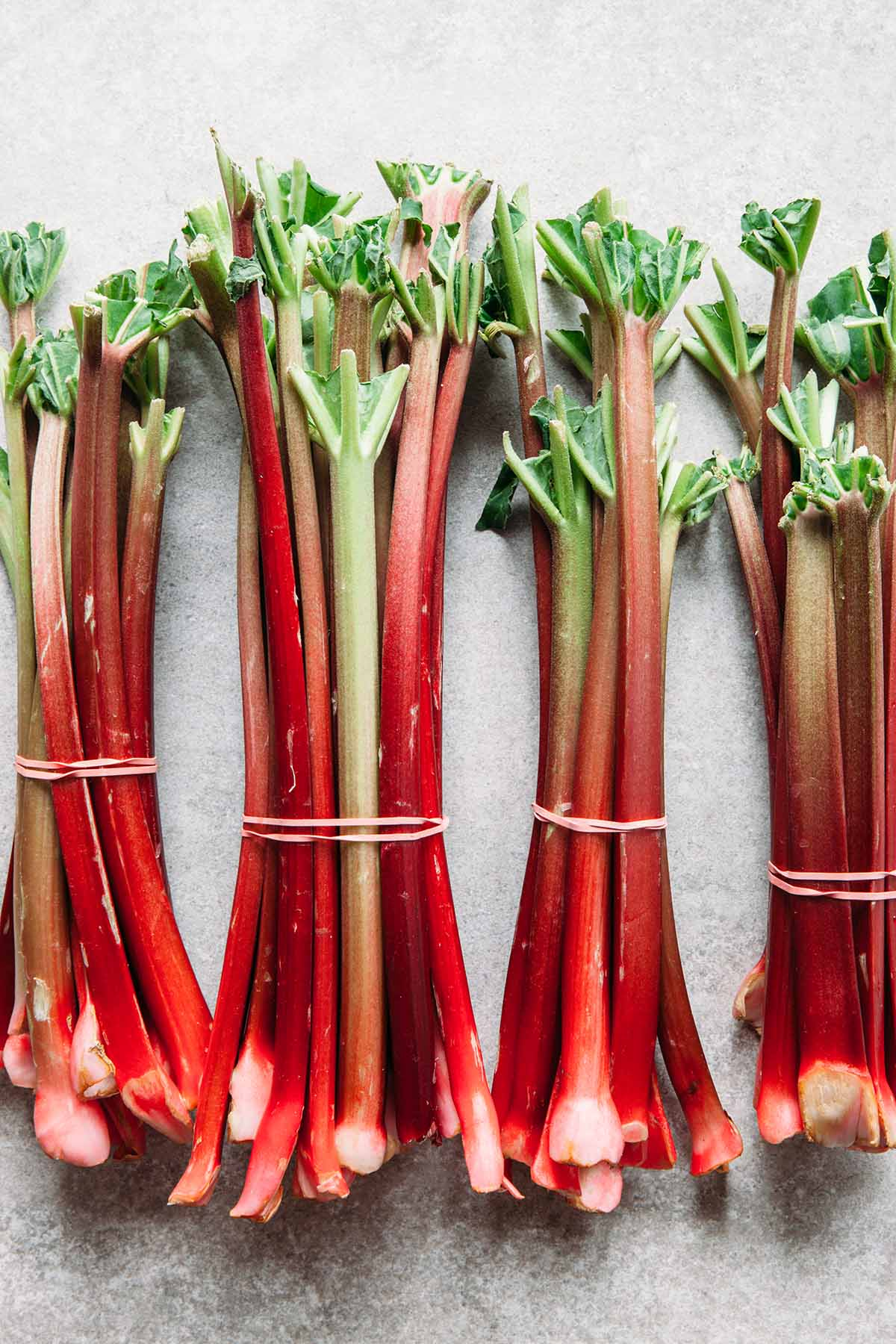 Bunches of fresh rhubarb bound with pink elastic bands.