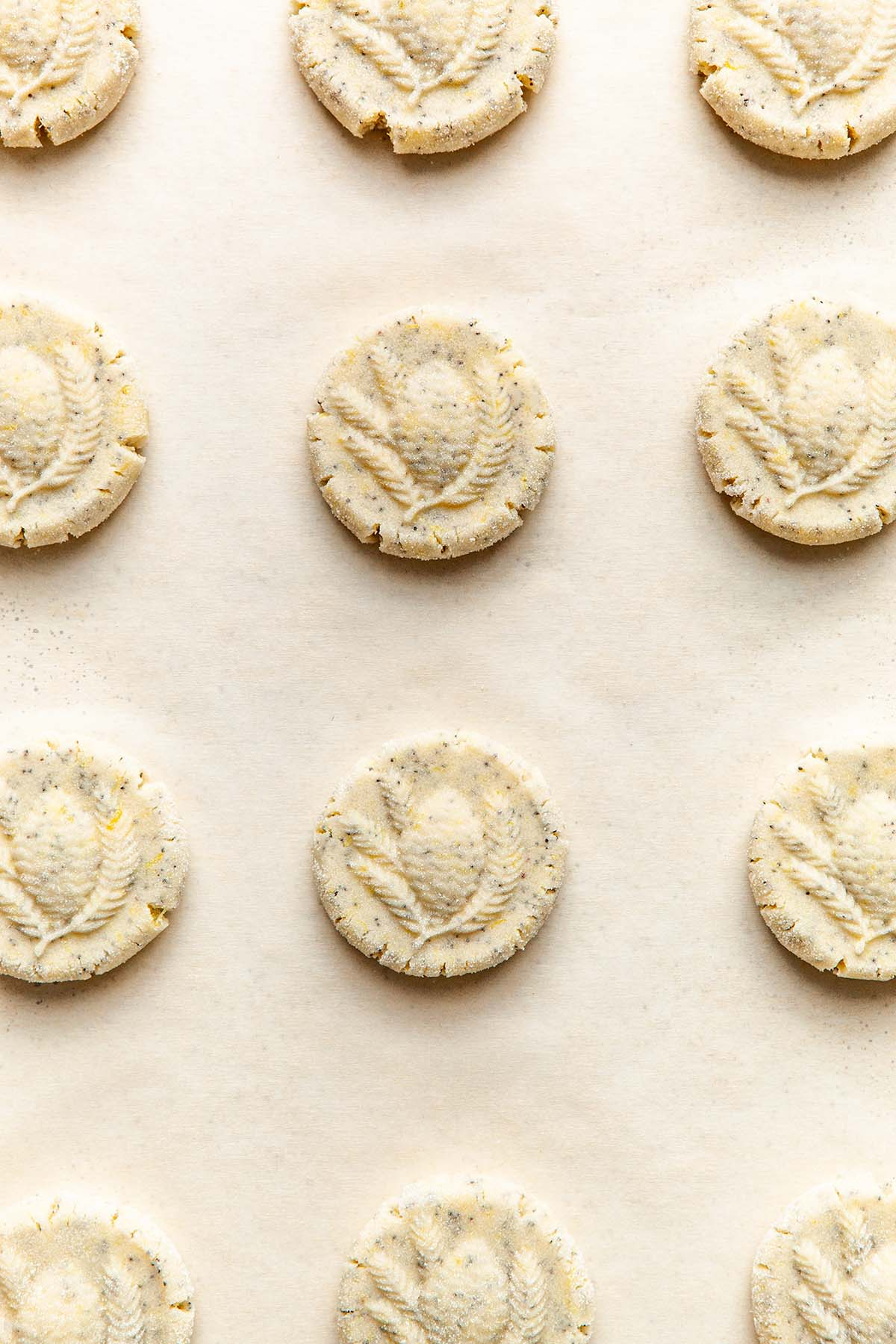 Unbaked cookies on a baking sheet lined with parchment paper.